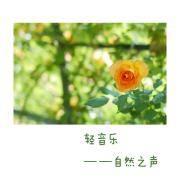 轻音乐【自然之声】