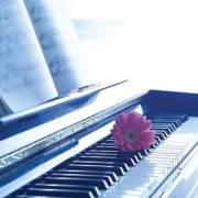 莫扎特经典钢琴曲