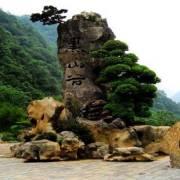 重庆-黑山谷景区