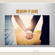 【爱的种子法则】解读伴侣关系当中的100道问题