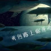 清新人生-涅槃重生- 戒色录音