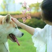 注册铲屎官--专业的狗狗饲养教程