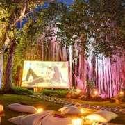 一小时 星光电影院-喜马拉雅fm