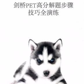 剑桥PET高分解题步奏教程全v高分颜体讲座技巧书法视频图片