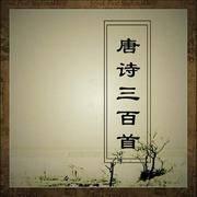 《唐诗三百首》 深度赏析