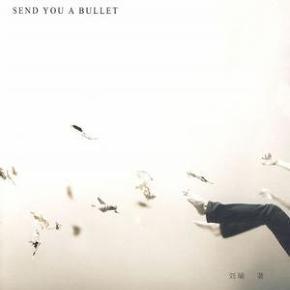 送你一颗子弹 - 刘瑜