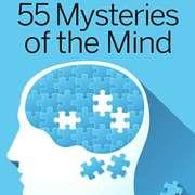 第039课|《问问大脑》1:「似曾相识」是前世记忆搞的鬼吗?-喜马拉雅fm