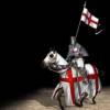 世界名著:《十字军骑士》评书版(第一部)