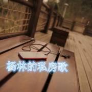 杨林的私房歌