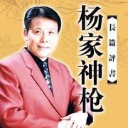 张少佐评书【杨家神枪】全150回版
