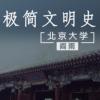 北京大学阎雨:极简文明史