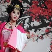 黄梅戏名段 韩再芬、严凤英、吴琼