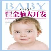 聪明宝宝全脑大开发(0~3岁)
