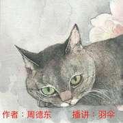 九命猫12-喜马拉雅fm