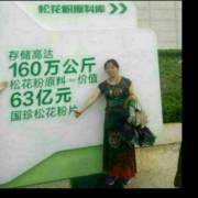 国珍1378