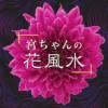 宮ちゃんの花風水 (日语)