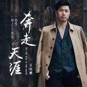 王旭鹏 - 奔走天涯(DJ Wave Mix)2017-喜马拉雅fm