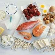 蛋白质 -《让你颜值满满,免疫力满满》-喜马拉雅fm
