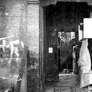 56.饲养大象、严嵩的衣服、王洛宾的母校~春雨胡同的故事-喜马拉雅fm