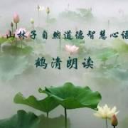 《山林子自然道德智慧心语》