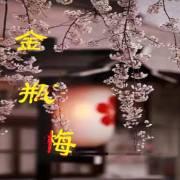 【评书】金瓶梅