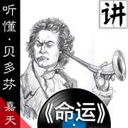 「附曲」Beethoven:Symphony No.5 in C minor, Op.67 - 4. Allegro-喜马拉雅fm