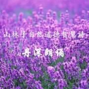 丹深 朗诵 [山林子自然智慧诗]