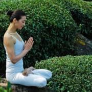 冥想 瑜伽 催眠 引导 放松 疗愈