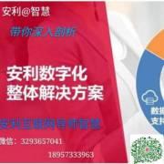 安利数字化安利互联网安利社群选
