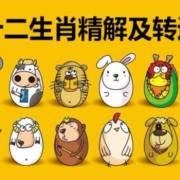 十二生肖转运法【生肖精解转运】