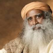 The Wise Sees Wisdom |Sadhguru