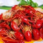 第十七章 巨婴小龙虾-喜马拉雅fm