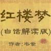 白话红楼梦全集,韦岽解读版