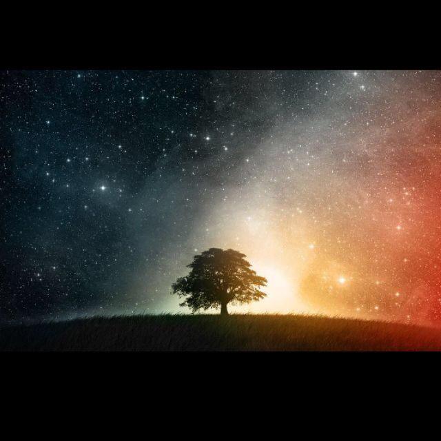 我最爱看天上密密麻麻的繁星.