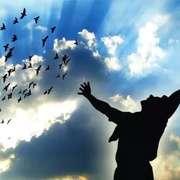 让我们飞越那悲伤的墙 诵读:子谦(苏克)-喜马拉雅fm