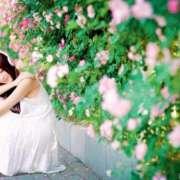 诗歌《十六岁的花季》作者:席幕蓉(台湾)朗诵:金荷wnh声音中的影像故事-喜马拉雅fm