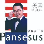 Pansesus揭秘另一面:美国真相