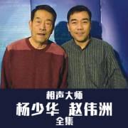 赵伟洲 杨少华 八扇屏(投江垫话)