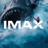 史前巨兽巨齿鲨来啦!
