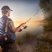 钓鱼技法入门篇