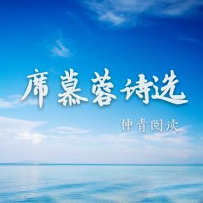 仲青阅读|席慕蓉诗选