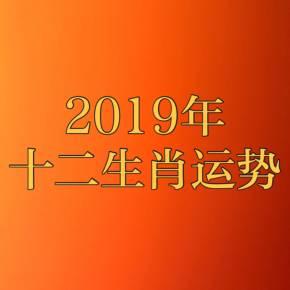 情感生活 播放全部 下载 订阅 分享 2019年十二生肖运势 专辑里的声音