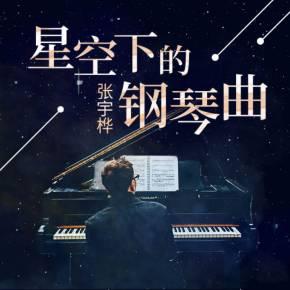 【全集】星空下的钢琴曲