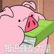 二更:听朱佩琪讲述猪猪家族史│妙宇连朱番外