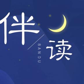 中国教育之声-伴读