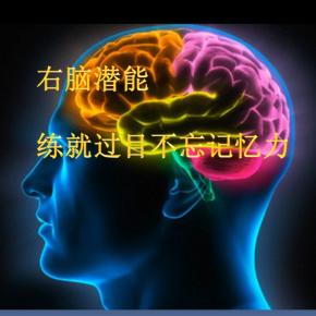 右脑潜能|练就过目不忘记忆力