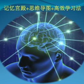 记忆宫殿+思维导图+高效学习法