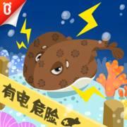 海底電擊手——電鰩(小知識) - 十萬個為什么【寶寶巴士百科故事】