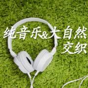 純音樂與大自然白噪音的交織