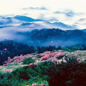 平顶山-尧山景区